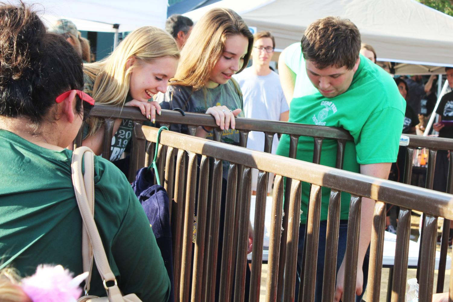 """Talking with students, senior FFA treasurer Jeffery Morphis shows the animals on display at Meet the Timberwolves on Aug. 22. With FFA's floral and entomology teams placing 37th and 19th at State last year, FFA members are off the a quick start this year with competition in mind. """"I love competing in Entomology contests,"""" Morphis said. """"I got 37th individual [at] state last year, and hopefully will get to the top ten this year. I'm also looking forward to the major stock show season, and hope to hit up all six Texas major shows."""""""