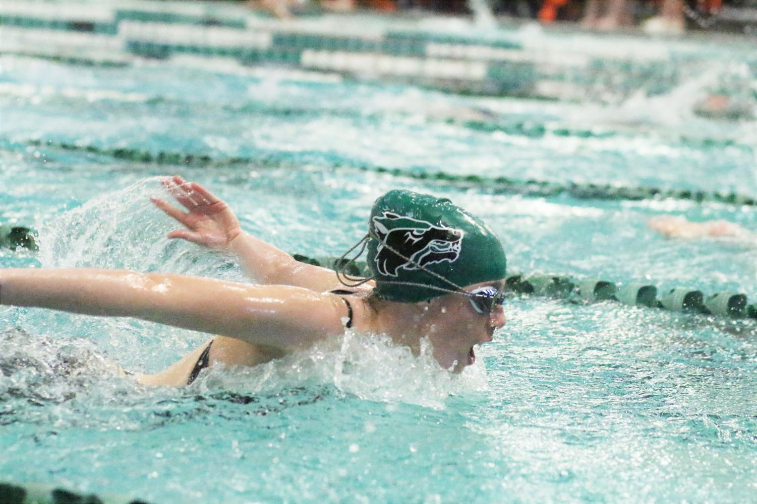 """Taking a deep breath, senior swim captain Ashley Poulsen participates in the 100 meter butterfly event at the district meet on Jan. 17. Both the swim and dive teams ranked first in the district, and are moving onto regionals. """"It is exciting knowing we won districts because we are one step closer to state,"""" Poulsen said. """"We are anxious about how regionals will go because we have been very close in years past. Last year the boys team lost first place and got second by half a point, so it will be an exciting meet coming up."""""""