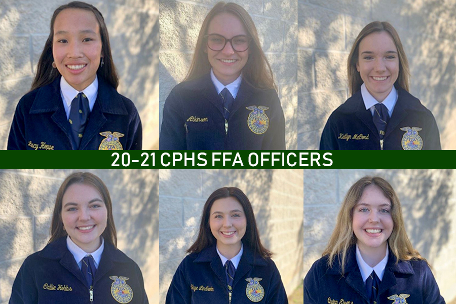 All seven of the FFA officers participated in the District LDE competition. The public relations team, the senior creed speaking team, chapter conducting and job interviewing will all advance to Area.