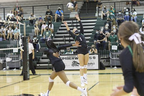 "Setting the ball, sophomore Dylan Gilkey jumps in the air to prepare the ball for her teammate. Cedar Park competed against Georgetown on Sept. 29 and won the game with a final score of 3-1. The team was 12-2 in District, but lost to Dripping Springs in the Playoffs. ""I think that this season went really well because we all came together as a team and strived to do our best, whether it be [at] practice or a game,"" Gilkey said. ""I love playing volleyball because of the team aspect; I think it's so fun perfecting your craft with your teammates and laughing with them along the way."""