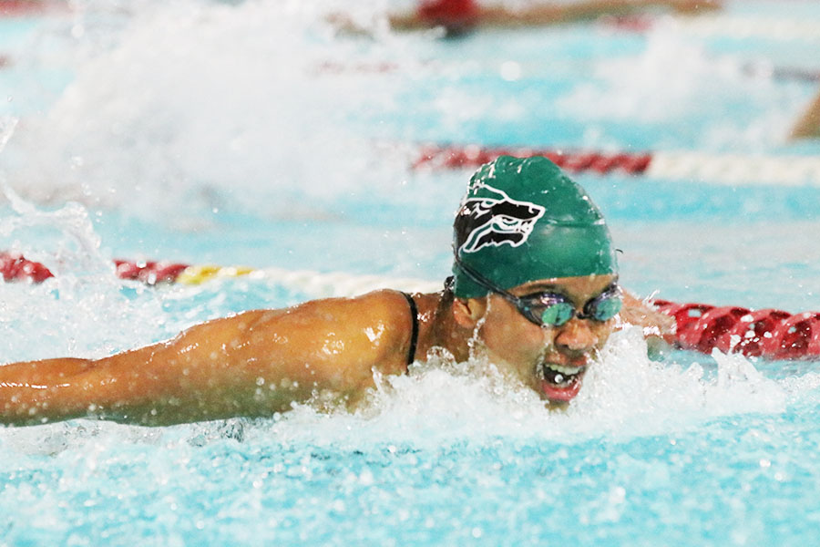 """Swimming her way to the finish line, senior Stella Shipps competes at the Belton swim meet on Dec. 16. Shipps has been swimming since she was nine and enjoys the sport to this day. """"[Swimming] gives me the opportunity to do one of the things I love the most,"""" Shipps said. """"[Through swimming] I am able to improve something about myself every day."""""""