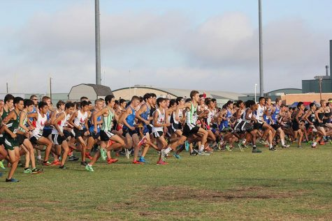 CP's Cross Country races into a new season
