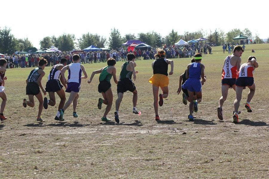 Senior+Tyler+Grendel+breaks+out+into+a+sprint+at+the+beginning+of+his+race+at+state.+The+CPHS+varsity+cross+country+team+advanced+to+state+that+took+place+on+Nov.+12+after+placing+second+at+their+regional+meet.