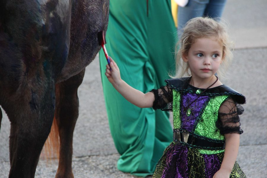 FFA's senior Shelby Rhoden brought her horse to be painted during Trunk-or-Treat.