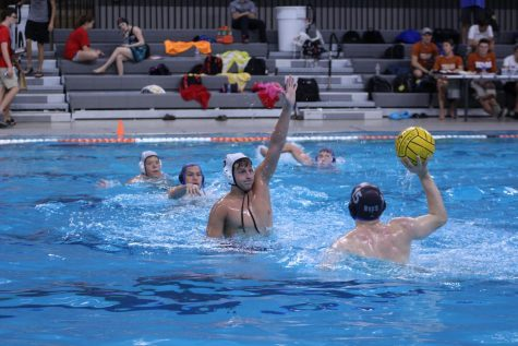 Water Polo Competes at State Tourney in First Ever Season