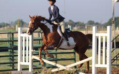She's Got Horse Power