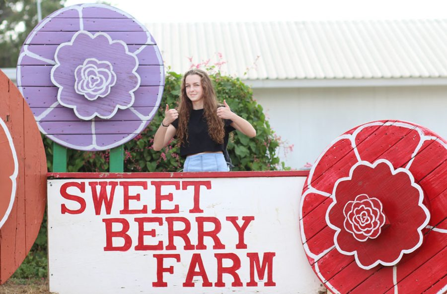 Sweet Berry Farms Review