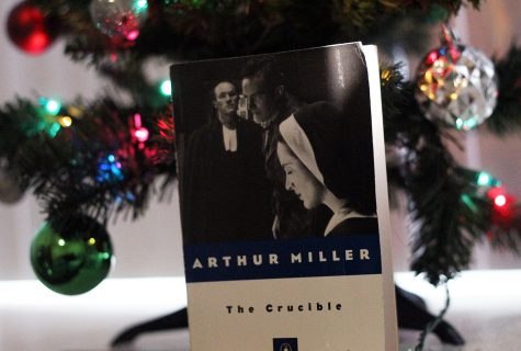 """""""The Crucible"""" is an insightful story that provides an interesting perspective on the Salem Witch Trials. It closely follows a cynical theme and understanding of the Trials in order to highlight the harm that comes from such hysteria."""