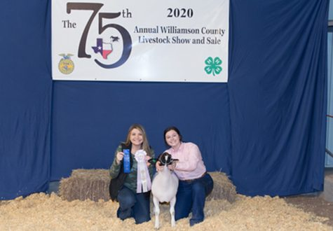 "Holding her lamb, senior FFA president Skye Lindholm poses at the annual Williamson County Livestock show. Lindholm joined FFA during her freshman year and has held multiple officer positions and participated in many competitions throughout high school. ""Being a member of FFA has taught me how to be a responsible, contributing member of society,"" Lindholm said. ""During my time in FFA, I was fortunate enough to be under our advisors who helped me grow and [become] better as a person."""